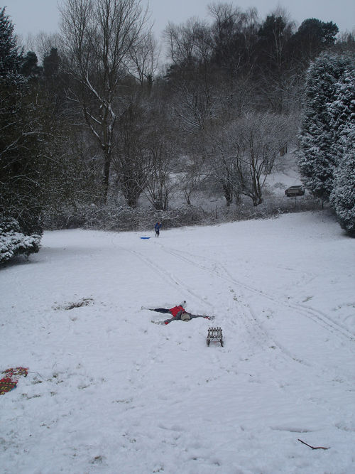 Snowfeb1