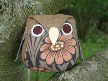 Owl11_2