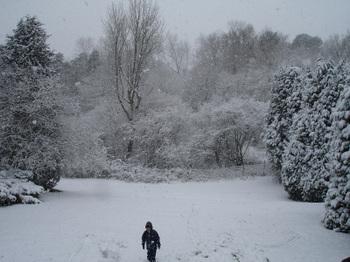 Snowyday1