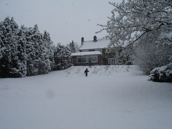Snowyday2