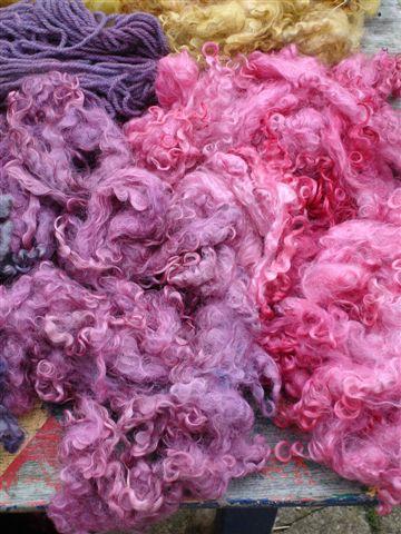 Cochineal and logwood