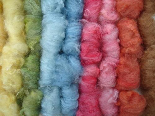 Carded fibre