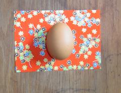 Egg1_1